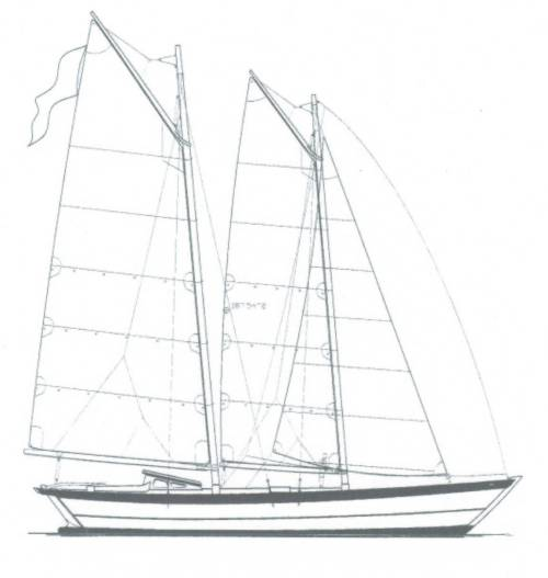 Plywood Catamaran Plans